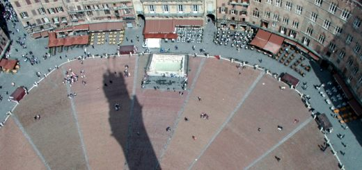Piazza del Campo from the Torre del Mangia, Siena. Photograph by Mirko Battisti