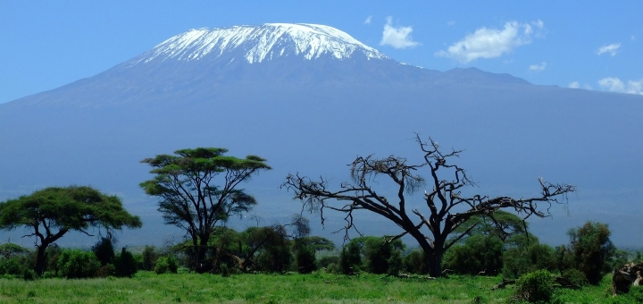 Mount Kilimanjaro. Photograph by Greg Montani