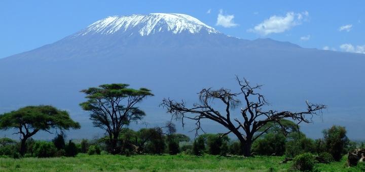 Mount Kilimanjaro. Photograph by Greg Montani